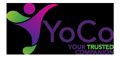 Yosoo Health Gear Contr/ôleur de Moteur /à Courant continu contr/ôleur de Brosse de Moteur 36V 500W pour Scooter de v/élo /électrique E-Bike